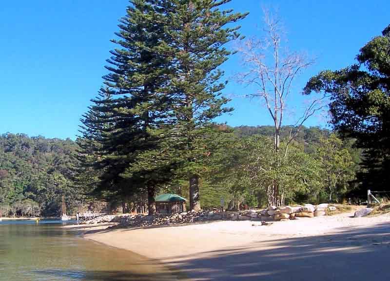 Wharf & beach at The Basin sydney