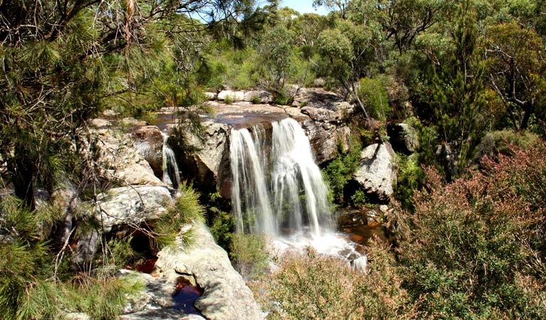 Scenic Destinations at the Royal National Park (3)